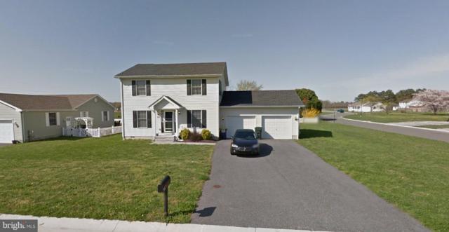 431 Cattle Drive, FELTON, DE 19943 (#DEKT184904) :: The Allison Stine Team