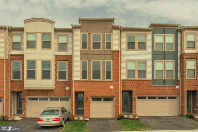 24474 Laurel Thicket Terrace, STERLING, VA 20166 (#VALO268838) :: ExecuHome Realty