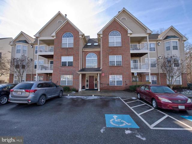 6513 Springwater Court #5304, FREDERICK, MD 21701 (#MDFR191592) :: Great Falls Great Homes