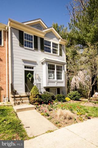 7100 Springhouse Lane, CHESTNUT HILL COVE, MD 21226 (#MDAA303826) :: TVRG Homes
