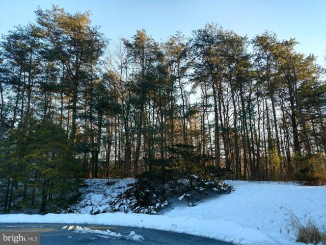 Lot 28 - Weaver Drive, MARYSVILLE, PA 17053 (#PAPY100296) :: Teampete Realty Services, Inc