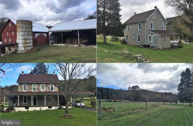 300 Harbaugh Valley Road, FAIRFIELD, PA 17320 (#PAAD102650) :: The Joy Daniels Real Estate Group