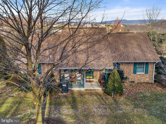 281 Haas Road, HAMBURG, PA 19526 (#PABK248344) :: Ramus Realty Group