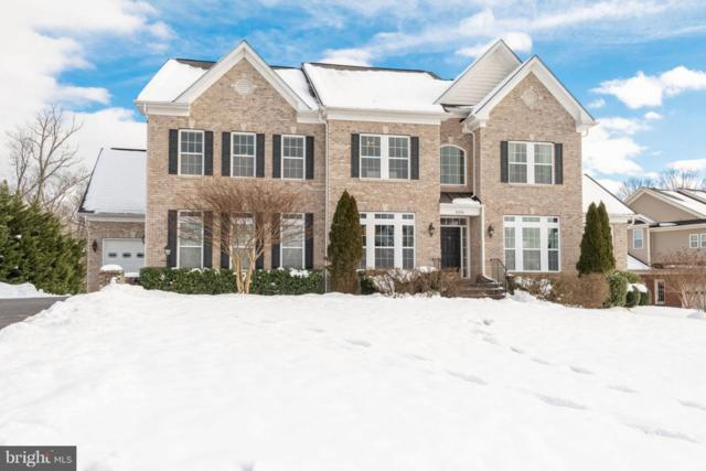 21584 Burnt Hickory Court, BROADLANDS, VA 20148 (#VALO268882) :: Great Falls Great Homes