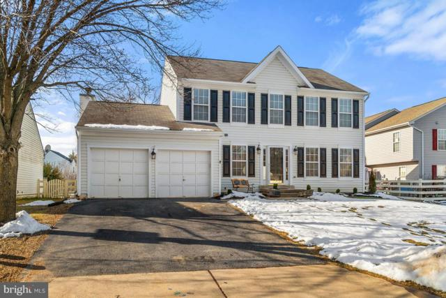 17311 Arrowood Place, ROUND HILL, VA 20141 (#VALO268910) :: LoCoMusings