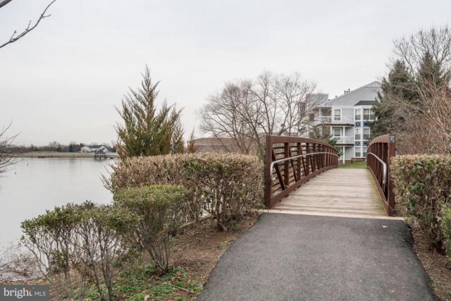20590 Cornstalk Terrace #202, ASHBURN, VA 20147 (#VALO268918) :: Cristina Dougherty & Associates