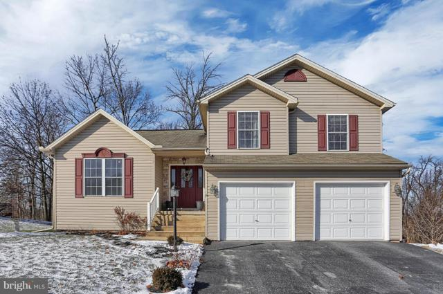 20 Bittersweet Lane, ETTERS, PA 17319 (#PAYK106544) :: The Joy Daniels Real Estate Group