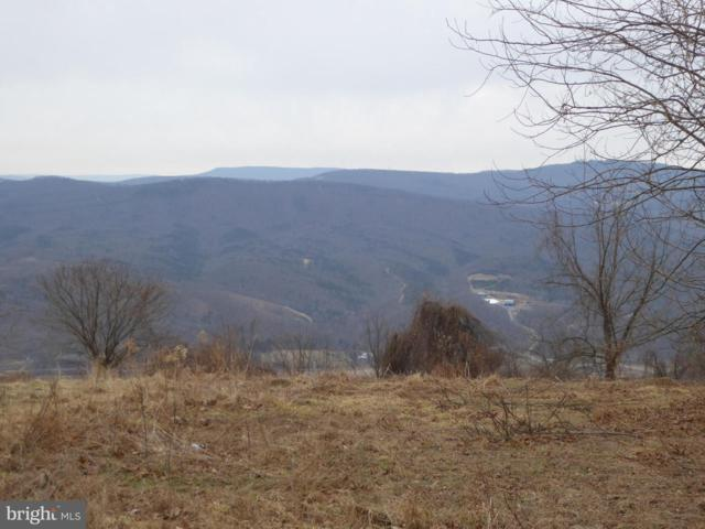 6 Skyview Drive, ROMNEY, WV 26757 (#WVHS106052) :: Arlington Realty, Inc.