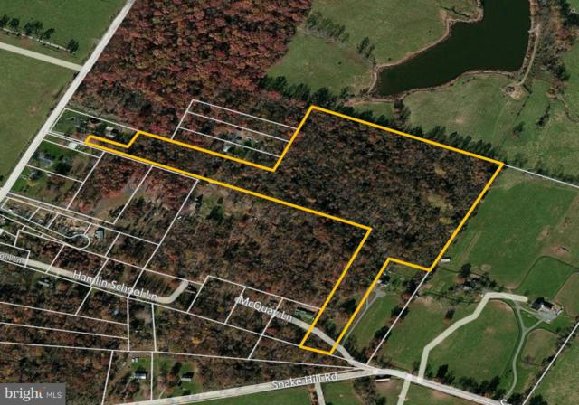 St Louis Rd, MIDDLEBURG, VA 20117 (#VALO269062) :: Blue Key Real Estate Sales Team