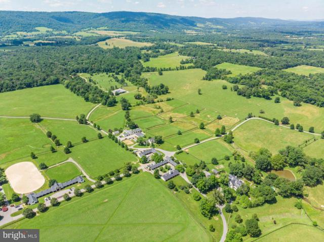 33542 Newstead Lane, UPPERVILLE, VA 20184 (#VALO269096) :: ExecuHome Realty
