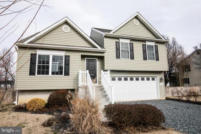 334 Virginia Road, STEVENSVILLE, MD 21666 (#MDQA123098) :: Colgan Real Estate