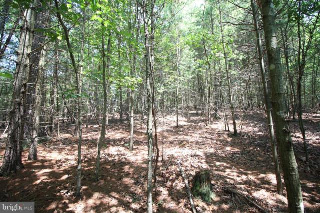 Lot 15 Slate Rock Pass Road, WARDENSVILLE, WV 26851 (#WVHD102184) :: Eng Garcia Grant & Co.