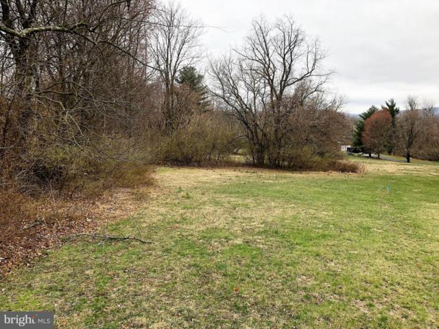 Freestate Drive, MIDDLETOWN, MD 21769 (#MDFR194290) :: The Maryland Group of Long & Foster