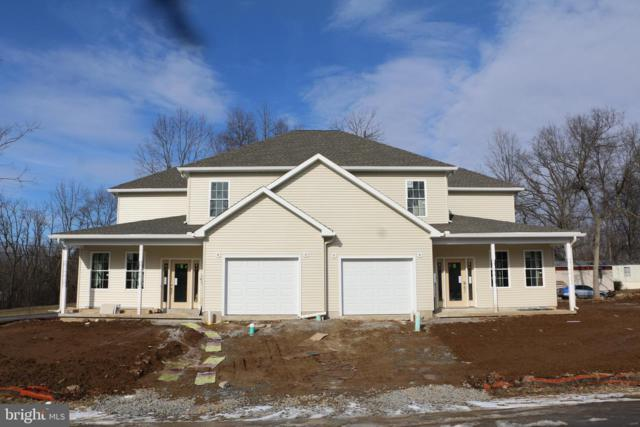 1009 Dianne Drive, GREENCASTLE, PA 17225 (#PAFL147954) :: The Heather Neidlinger Team With Berkshire Hathaway HomeServices Homesale Realty