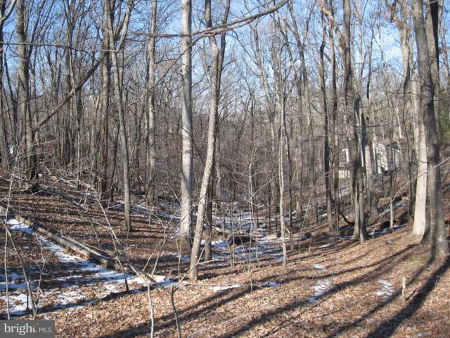 Mountain Lake Road, HEDGESVILLE, WV 25427 (#WVBE148200) :: ExecuHome Realty