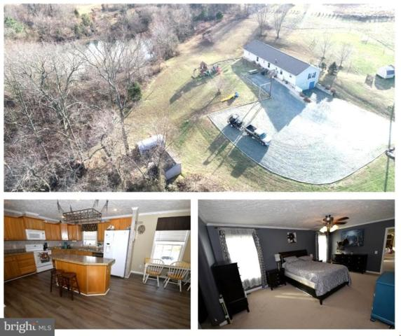 11339 Station Road, WORTON, MD 21678 (#MDKE110490) :: The Maryland Group of Long & Foster