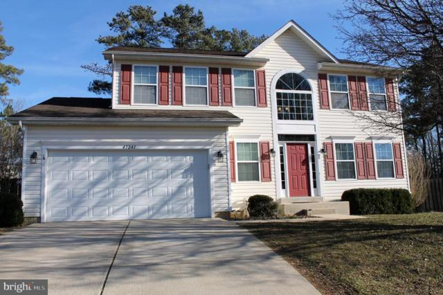 47241 Schwartzkopf Drive, LEXINGTON PARK, MD 20653 (#MDSM147886) :: Pearson Smith Realty
