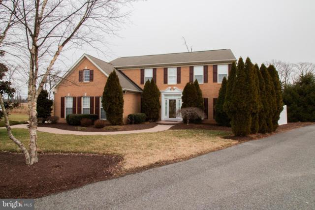 343 Creeks End Lane, STEVENSVILLE, MD 21666 (#MDQA128968) :: The Maryland Group of Long & Foster