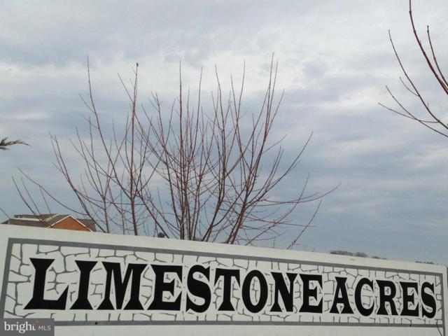 22132 Whitestone Court, SMITHSBURG, MD 21783 (#MDWA148236) :: Eng Garcia Grant & Co.