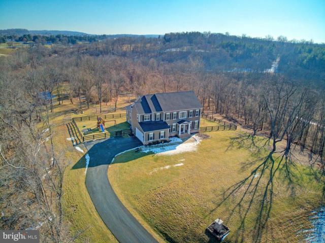 39859 Charles Henry Place, WATERFORD, VA 20197 (#VALO307926) :: LoCoMusings