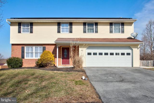 4161 Magnolia Drive, MOUNT JOY, PA 17552 (#PALA120400) :: The Heather Neidlinger Team With Berkshire Hathaway HomeServices Homesale Realty
