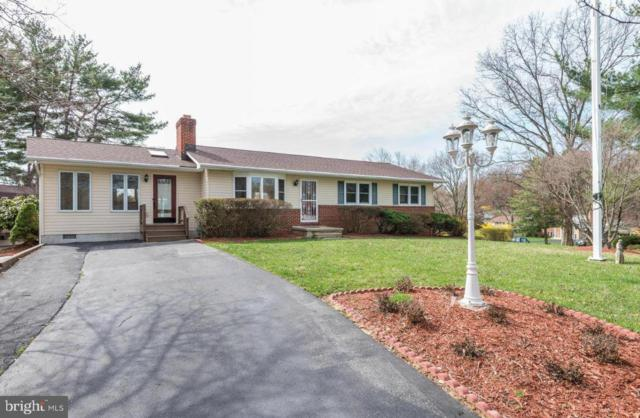 4009 Dee Jay Drive, ELLICOTT CITY, MD 21042 (#MDHW229968) :: Colgan Real Estate