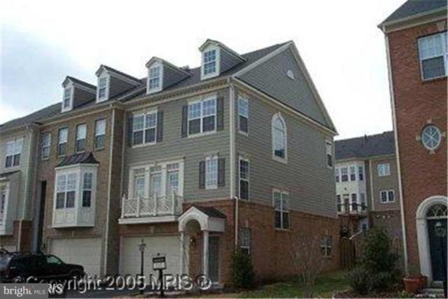 19149 Commonwealth Terrace, LEESBURG, VA 20176 (#VALO314916) :: Blue Key Real Estate Sales Team
