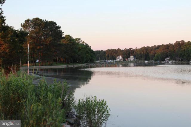 111 Point Road, STEVENSVILLE, MD 21666 (#MDQA130310) :: Colgan Real Estate