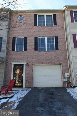 135 Teague Lane, MARTINSBURG, WV 25404 (#WVBE153042) :: Colgan Real Estate