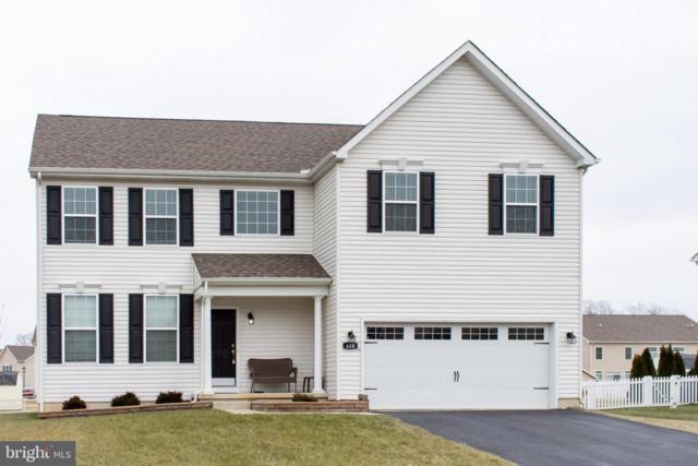 408 Southern View Drive, SMYRNA, DE 19977 (#DEKT203438) :: Colgan Real Estate