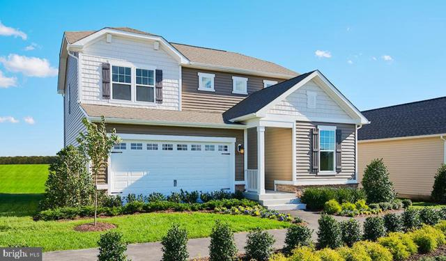Chestnut Drive- Cirtine, CULPEPER, VA 22701 (#VACU129554) :: The Bob & Ronna Group
