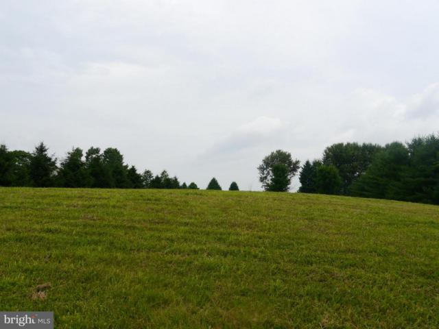 Mt Tabor Road, HAGERSTOWN, MD 21740 (#MDWA150666) :: ExecuHome Realty