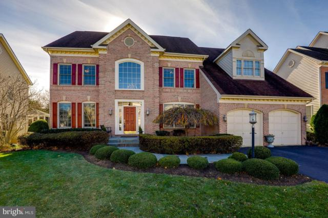 18439 Rim Rock Circle, LEESBURG, VA 20176 (#VALO315022) :: Remax Preferred | Scott Kompa Group
