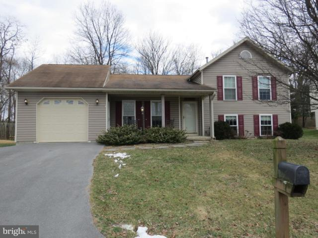 17326 Tamarack Drive, WILLIAMSPORT, MD 21795 (#MDWA150668) :: Blue Key Real Estate Sales Team