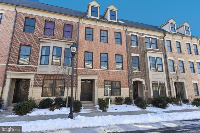 42243 Riggins Ridge Terrace, BRAMBLETON, VA 20148 (#VALO315028) :: LoCoMusings
