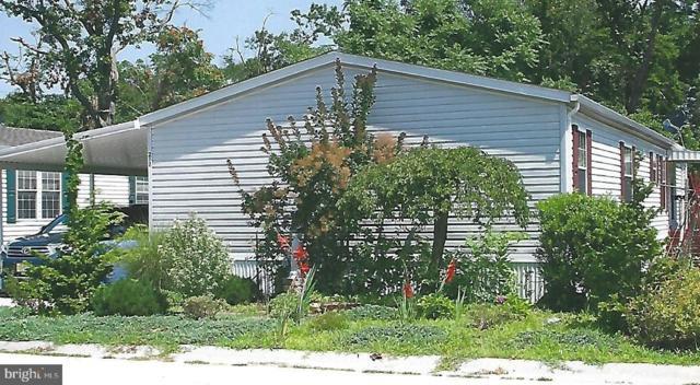 217 Tony Circle, MANTUA, NJ 08051 (#NJGL213470) :: Remax Preferred | Scott Kompa Group