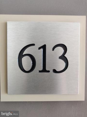 4480 Market Commons Drive #613, FAIRFAX, VA 22033 (#VAFX867814) :: The Greg Wells Team