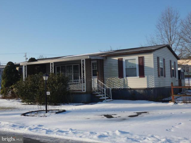 55 Stony Run Village, DENVER, PA 17517 (#PALA120696) :: The Craig Hartranft Team, Berkshire Hathaway Homesale Realty