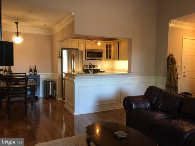 20273 Beechwood Terrace #303, ASHBURN, VA 20147 (#VALO315228) :: The Greg Wells Team