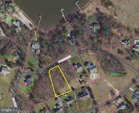 114 Waterview Lane, DAGSBORO, DE 19939 (#DESU131322) :: RE/MAX Coast and Country