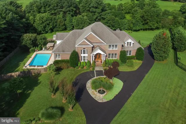 513 Tanbark Court, BRINKLOW, MD 20862 (#MDMC560024) :: Colgan Real Estate