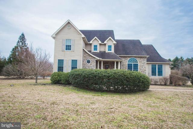 14185 Melody Drive, PRINCESS ANNE, MD 21853 (#MDSO101620) :: The Bob & Ronna Group