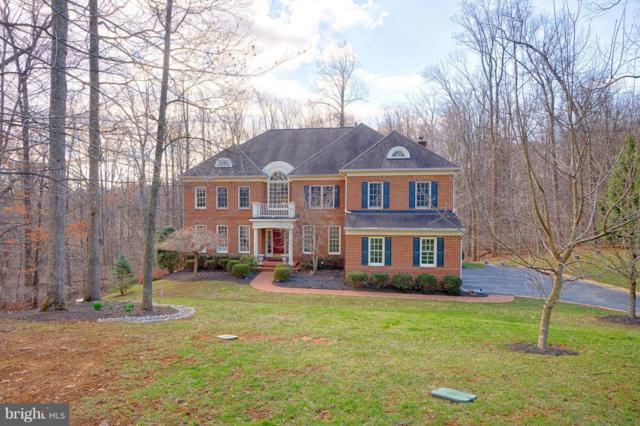 40577 Black Gold Place, LEESBURG, VA 20176 (#VALO315312) :: Blue Key Real Estate Sales Team