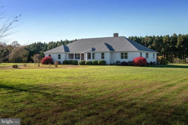 9070 Fox Meadow Lane, EASTON, MD 21601 (#MDTA127640) :: Remax Preferred | Scott Kompa Group