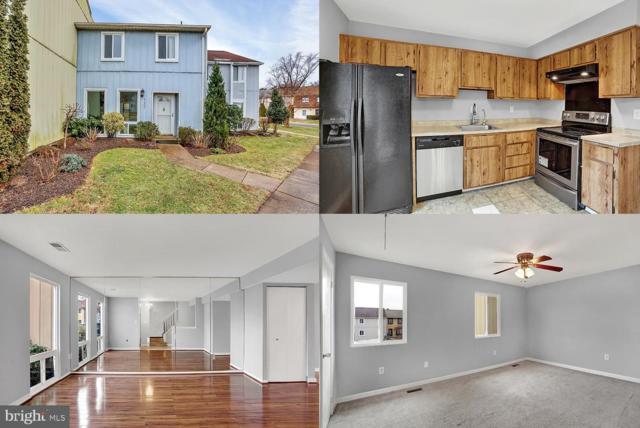 1007 Saber Lane, HERNDON, VA 20170 (#VAFX871094) :: The Piano Home Group