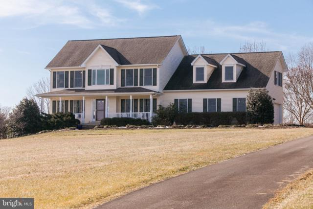 6802 Hunt Valley Court, MIDDLETOWN, MD 21769 (#MDFR215024) :: The MD Home Team