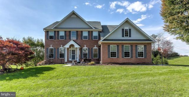 20021 Meadowsweet Lane, GLEN ROCK, PA 17327 (#PAYK109238) :: The Heather Neidlinger Team With Berkshire Hathaway HomeServices Homesale Realty
