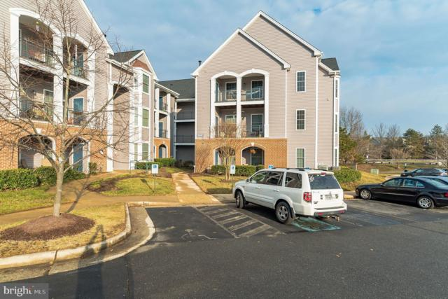 20445 Chesapeake Square #102, STERLING, VA 20165 (#VALO316542) :: LoCoMusings