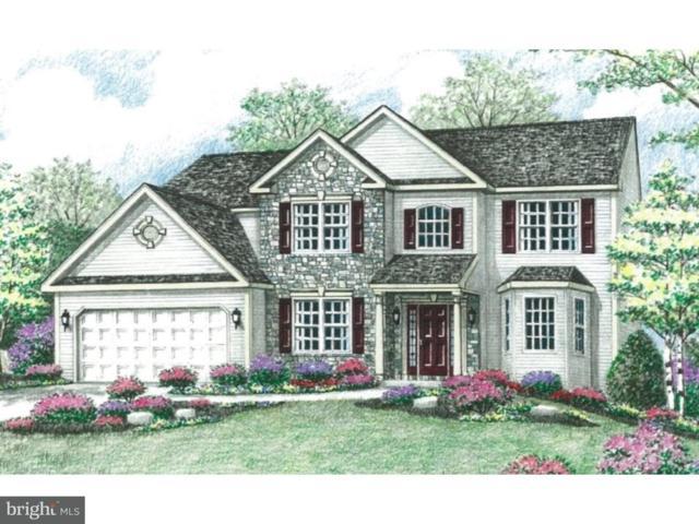 14 Goldeneye Drive Lot 61, SINKING SPRING, PA 19608 (#PABK303518) :: Colgan Real Estate