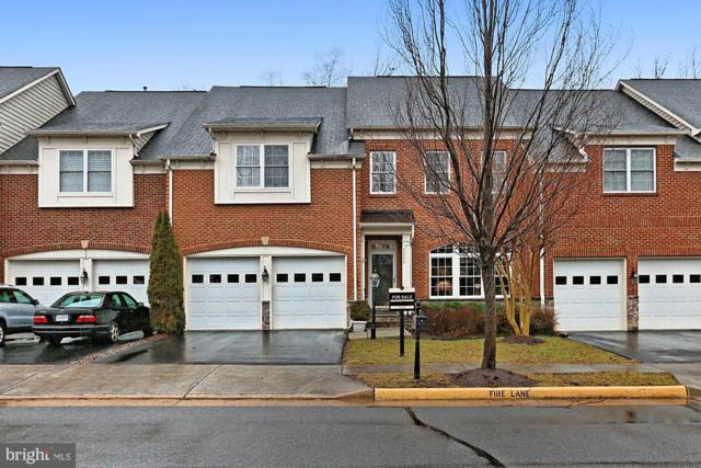 43570 Merchant Mill Terrace, LEESBURG, VA 20176 (#VALO316548) :: Network Realty Group